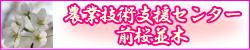 aguri_banner
