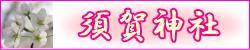 suga_banner